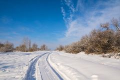 Countryside road through winter field with forest on a horizon. Stock Images