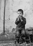 Countrylife. Little boy eating sweet apple stock photos