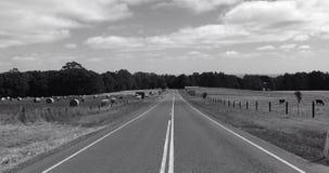 CountryRoad Стоковое Изображение RF