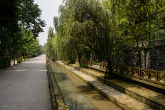 Countryroad along irrigation canal in sunny verdant summer Royalty Free Stock Photo