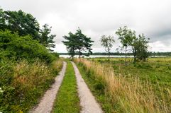 Countryroad at the countryside of Gotland stock photos