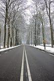 Countryroad dans l'hiver Image libre de droits