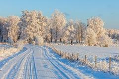 Countryroad en el invierno Fotografía de archivo