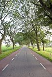 Countryroad in the Netherlands Royalty Free Stock Photography