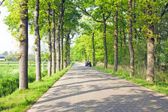 Countryroad in Netherlands Stock Photography