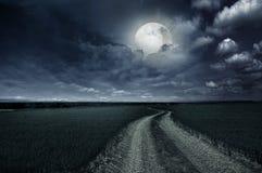 Countryroad night bright illuminated. Large moon stock photography