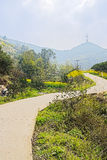 Countryroad sinuous in flowering mountain on sunny spring Royalty Free Stock Photography