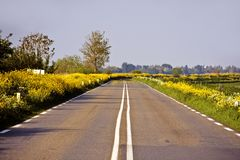 Countryroad in springtime in the Netherlands Royalty Free Stock Images