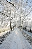 Countryroad in wintertime Royalty Free Stock Photos