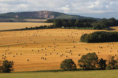 Countryside view in Fife at harvest time Stock Photos