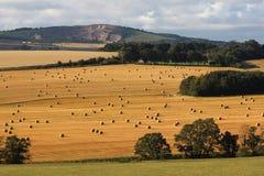 Countrysdie widok w piszczałce przy żniwo czasem Zdjęcia Stock