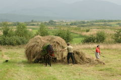 Countryside. Some of the people in my village of origin from romania Stock Photography