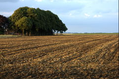 Countryside. Scenic view of ploughed field in countryside with cloudscape background Royalty Free Stock Photos