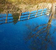 Countryside. Reflection in water of old countryside fence with tree, against a clear blue sky in background stock images