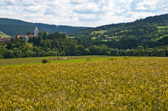 Countryside. Landscape in the south of the Czech Republic royalty free stock photos
