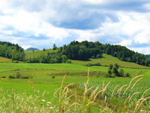 In the countryside. Photo taken in Harrington, Quebec, Canada Royalty Free Stock Images