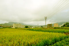 Countryside. South China's rural daily look Stock Photography
