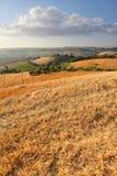 Italian Countryside Landscape Stock Image