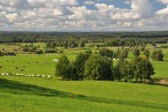 Countryside. Typical summer view in Latvia, Vecpiebalga stock photos