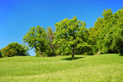 Countryside. Beautiful secluded countryside in a clear-sky day in Czech republic. The Carpathian Mountains Royalty Free Stock Photo