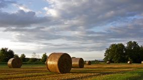 Countryside stock video footage