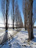 Countryside alley in light snow stock image