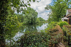 Countryside along the River Great Ouse Stock Image