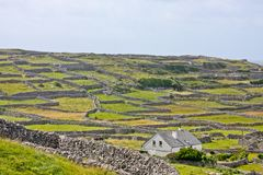 Countryside on the Aran island of Inisheer, Ireland. Landscape of life in Inisheer village, Aran Islands, Ireland Stock Image