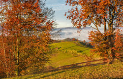 Countryside area at foggy morning in autumn Royalty Free Stock Photography