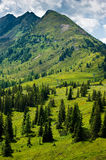 The countryside around the town of Ramsau am Dachstein. Stock Images