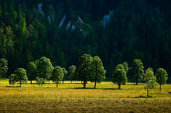 The countryside around the town of Ramsau am Dachstein. Royalty Free Stock Image