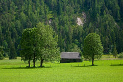 The countryside around the town of Ramsau am Dachstein. Royalty Free Stock Photography