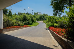 Countryside asphalt road on woody hillside in sunny summer Stock Photos