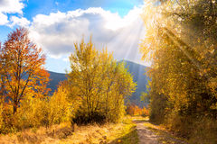 Countryside Autumn landscape with sunlight and sunbeams Stock Image