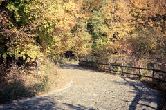 Countryside autumn view Royalty Free Stock Image