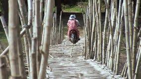 bamboo, bridge, cambodia stock video