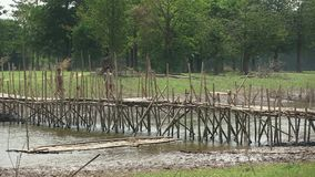 bamboo, bridge, cambodia stock video