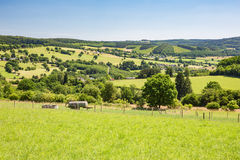 Countryside in the Belgian Ardennes