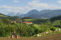 Countryside at biscay, spain Royalty Free Stock Photography