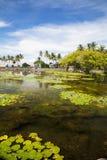 Countryside at Candidasa, Bali, Indonesia Stock Photo