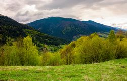 Countryside of Carpathian mountains in springtime. Beautiful nature scenery on a cloudy day Royalty Free Stock Photo