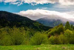 Countryside of Carpathian mountains in springtime. Beautiful nature scenery on a cloudy day Stock Photos