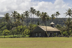 Countryside church among palm trees Stock Photography