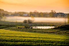 Countryside at dawn Royalty Free Stock Photography
