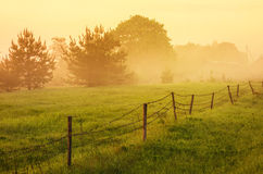 Countryside at dawn Royalty Free Stock Images
