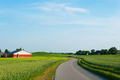 Countryside in Denmark Royalty Free Stock Photography