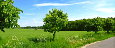 Countryside in Denmark Stock Images