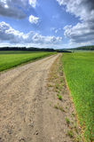 The countryside - Denmark Royalty Free Stock Photos