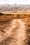 Countryside Desert Dirt Road Stock Images