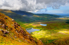 Countryside on Dingle Peninsula Royalty Free Stock Photo